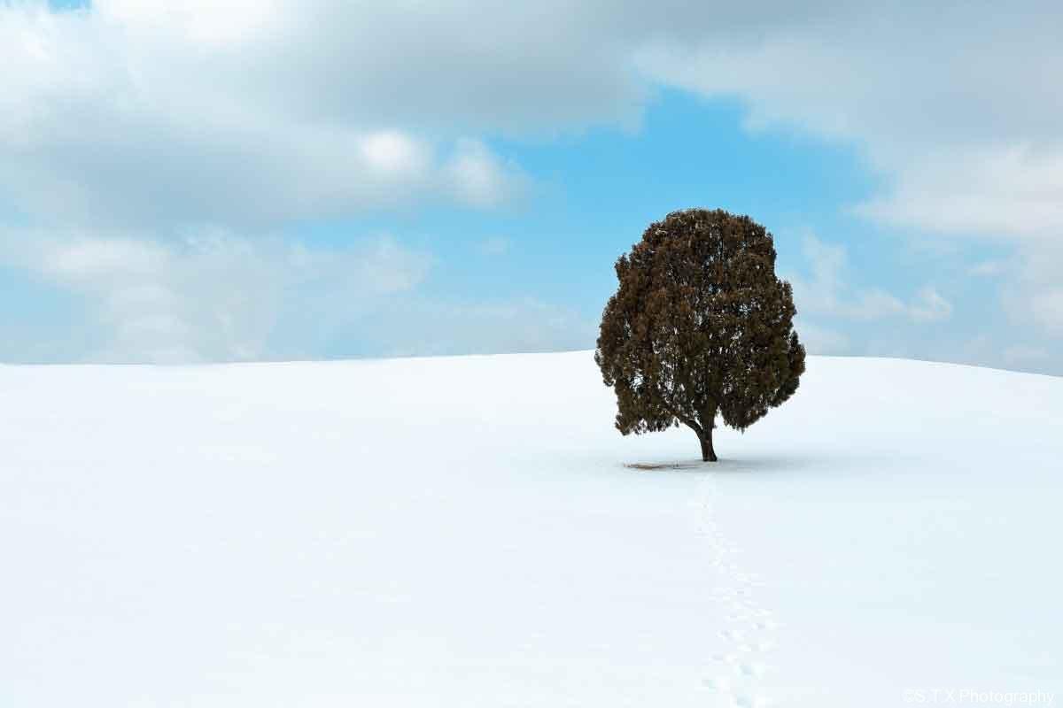 飘在思密达、首尔的冬天、首尔故事