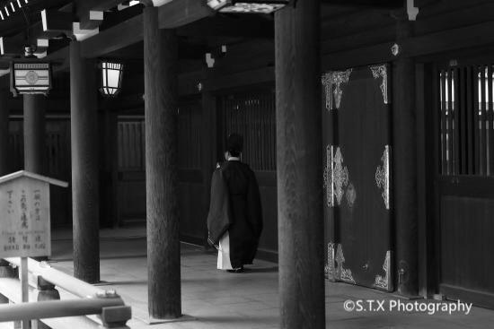 日本东京街拍、明治神宫