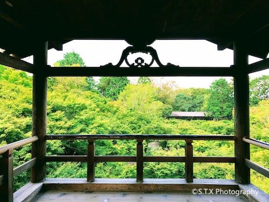 东福寺、通天桥