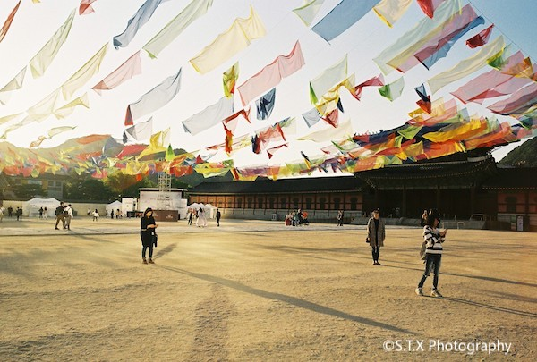 2019 CONTAX G2街拍、景福宫