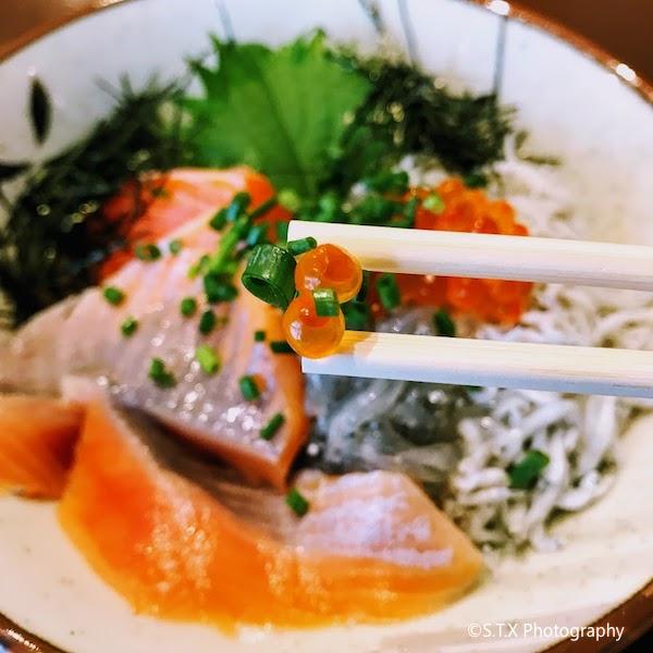沙丁鱼三文鱼盖饭