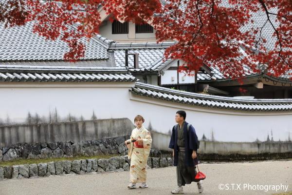 奈良、东大寺、日本旅游街拍、飘在思密达