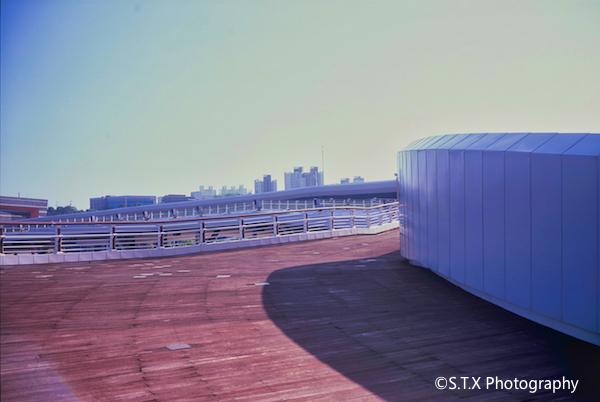 富士GW690III、丽水世博会园区