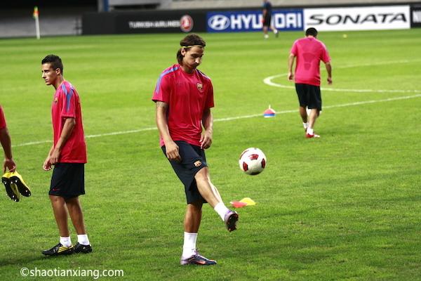 兹拉坦·伊布拉西莫维奇、Zlatan Ibrahimović