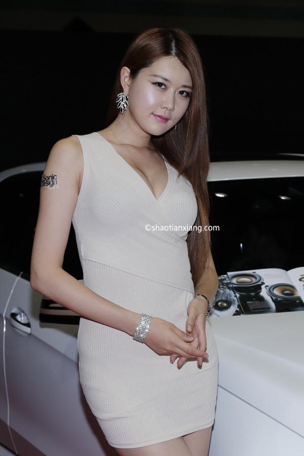 2014首尔汽车沙龙、韩国车模