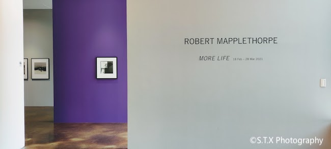 罗伯特·梅普尔索普、Robert Mapplethorpe
