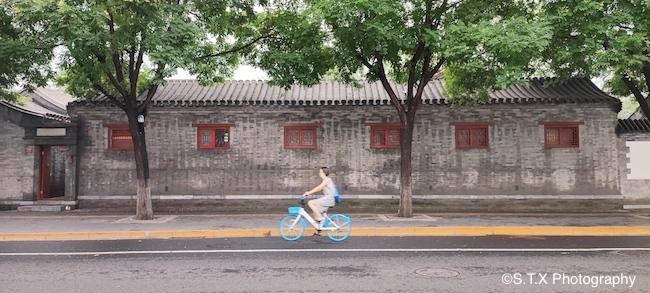 手机街拍作品、共享单车